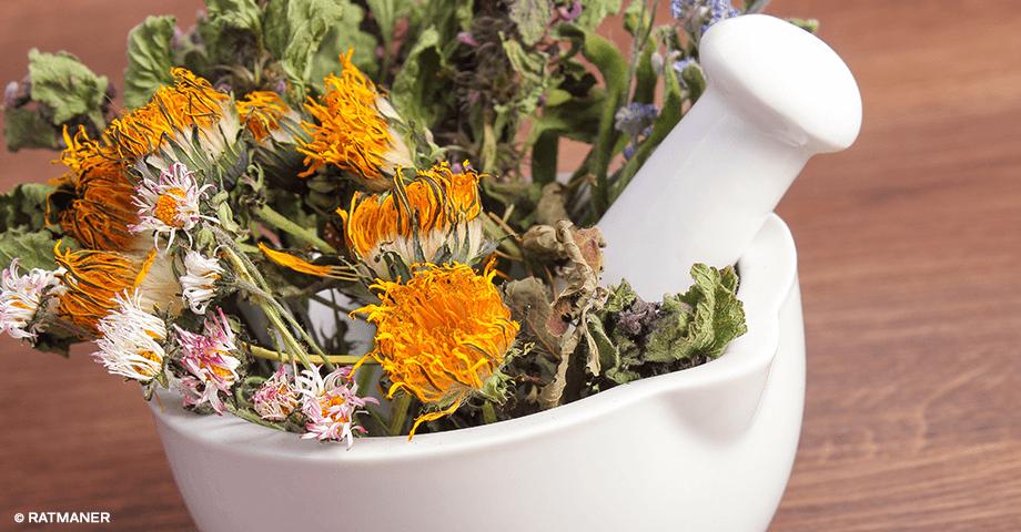 Sommerküche Diy : Sommerküche selber bauen u avaformalwear