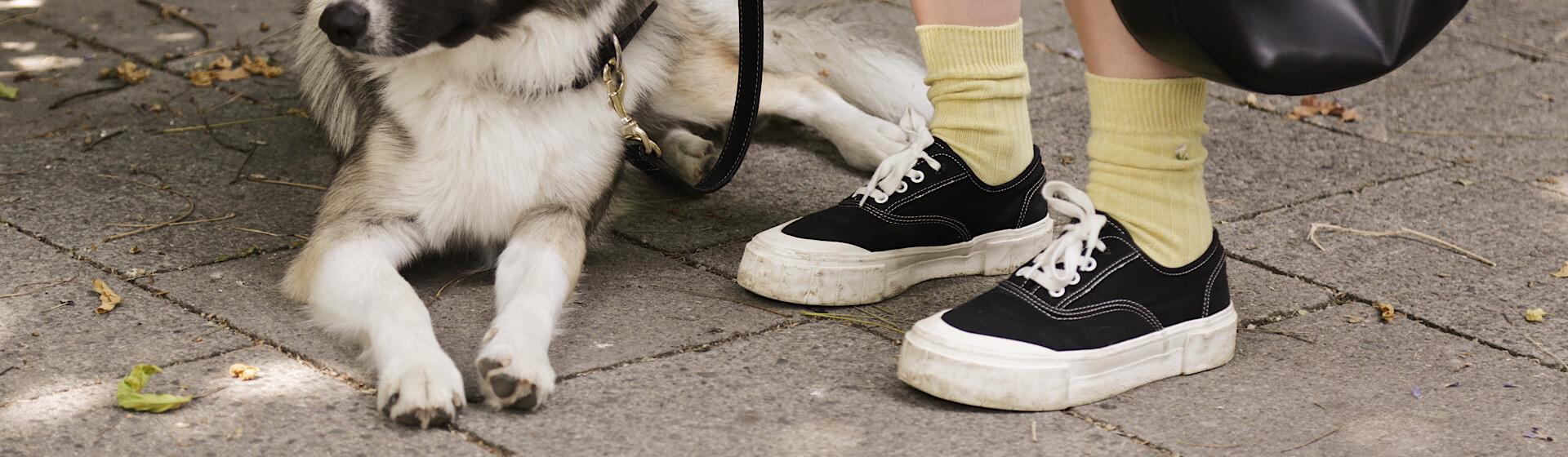 Shoelove Stoffschuhe in schwarz Header