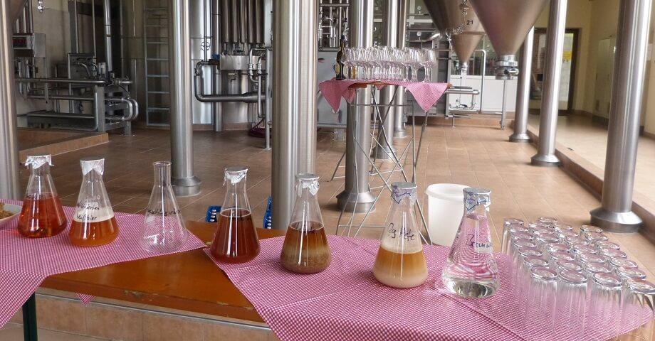 Craft Beer, Gin und Co. – Trendgetränke - Shoelove by Deichmann