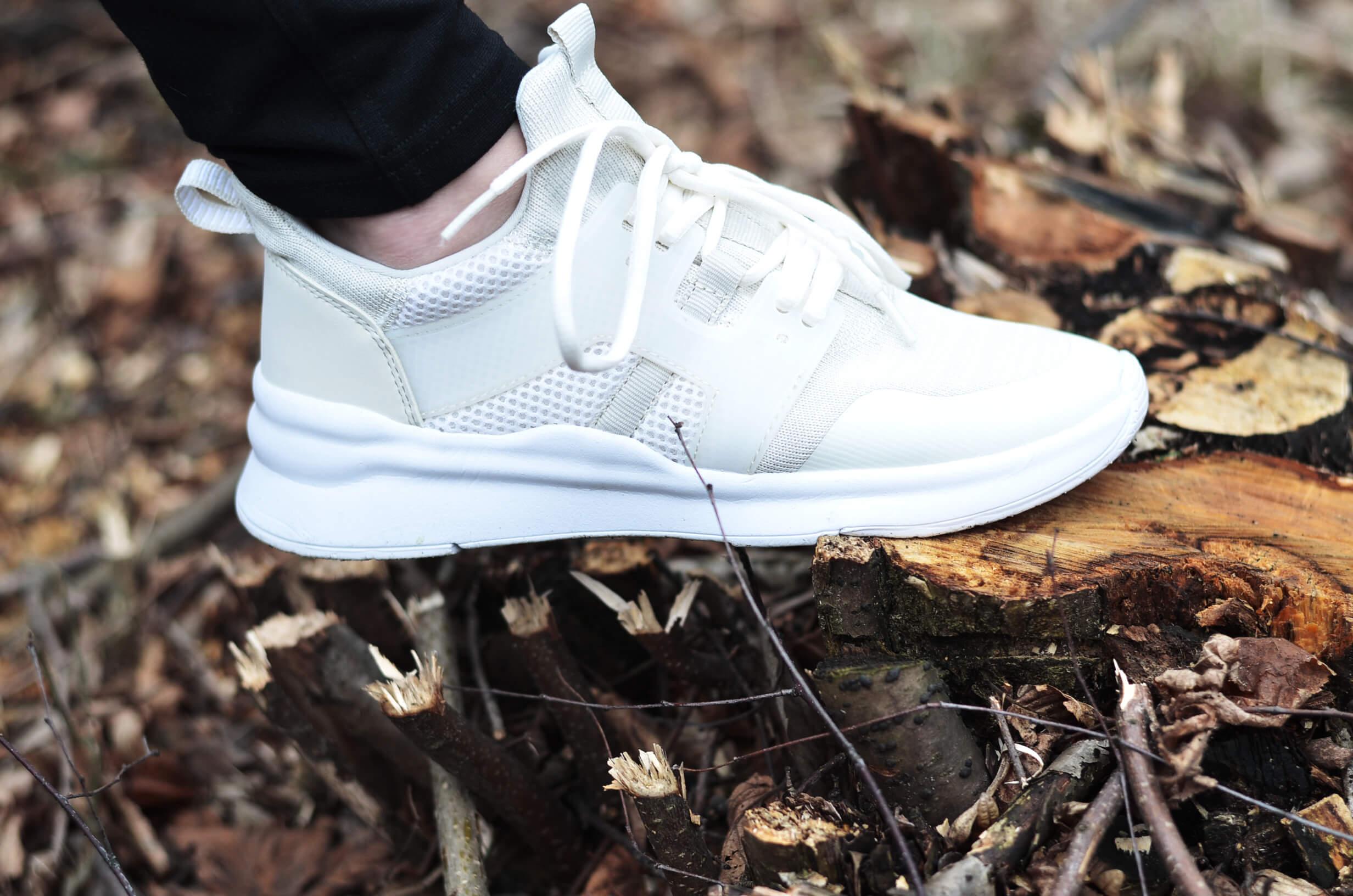Sneakery Graceland